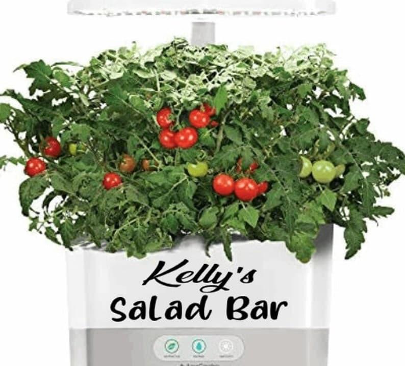kellys salad bar decal for aerogarden